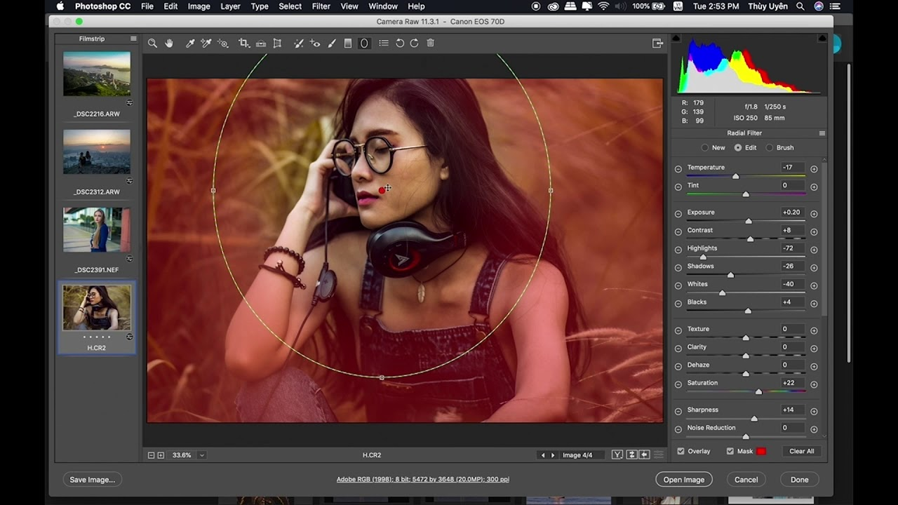 Bài 89: Camera Raw: Graduated Filter, Radial Filter, Adjustment Brush | Làm Chủ Photoshop CC 2018
